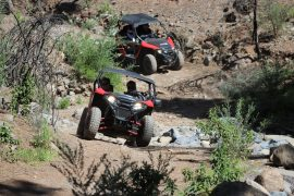 Trip Buggy Mountain