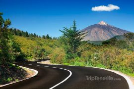 Teide North