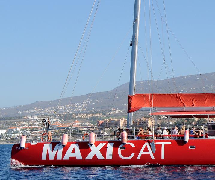 Maxicat