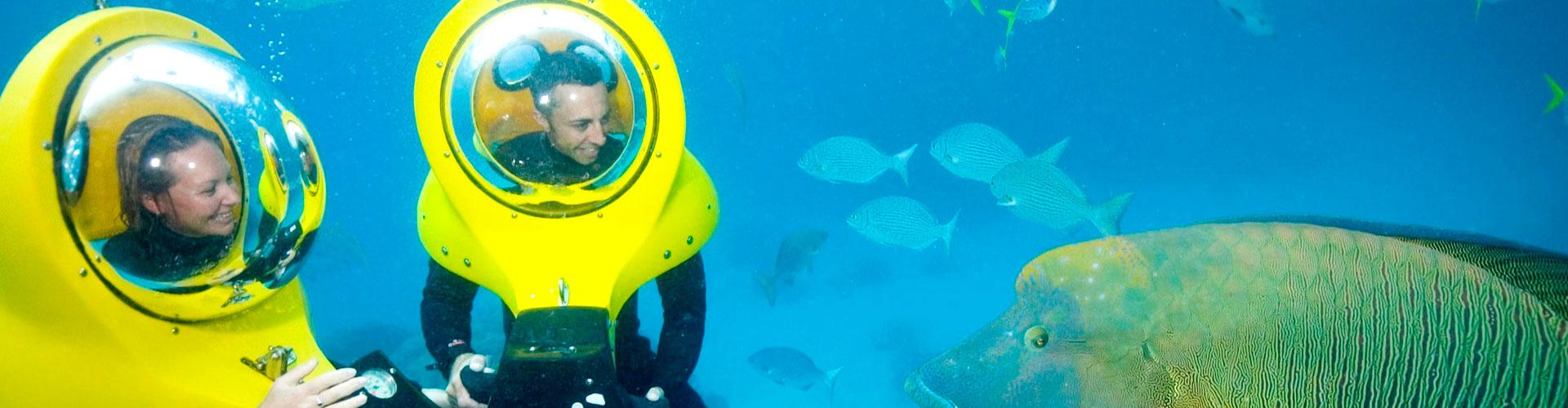 Bob Diving