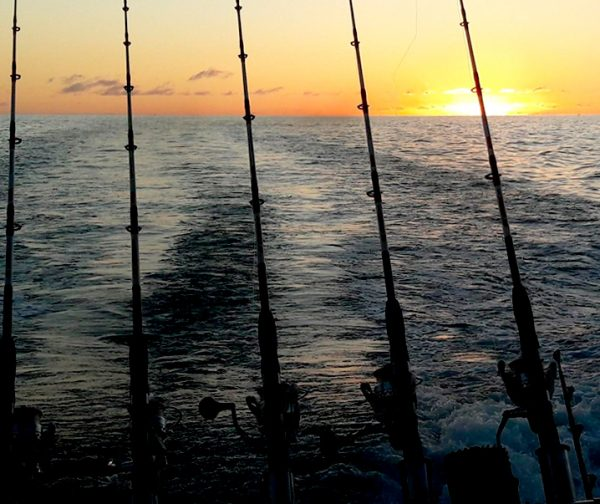No Limit Fishing Tenerife