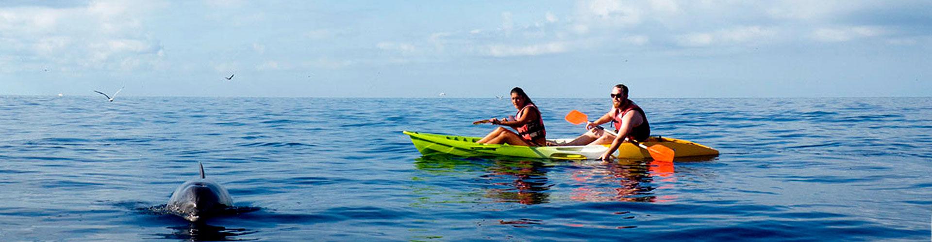 Kayak y Snorkeling con Tortugas